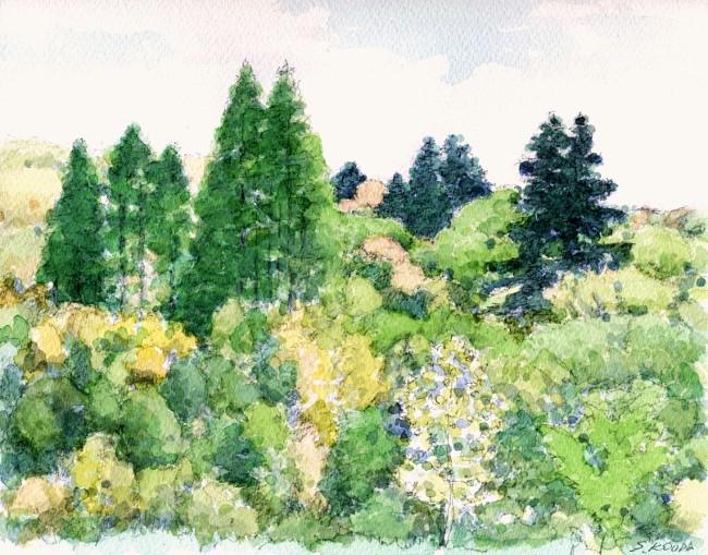 春の山交野2 (650x509)