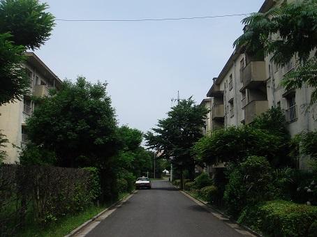 松原団地07