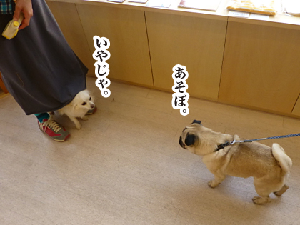 140603-02.png