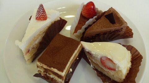 シナモニ皿ケーキ②