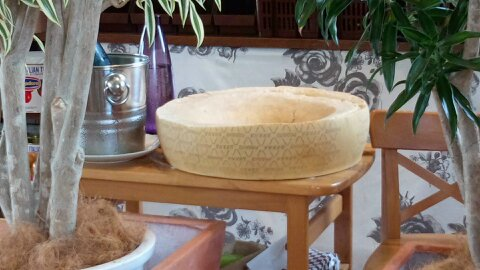 パッショーネチーズ