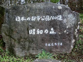 16101.jpg
