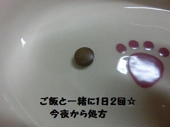 16760.jpg