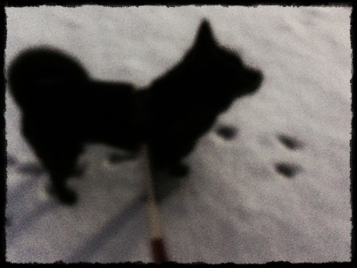 ri-ru雪②