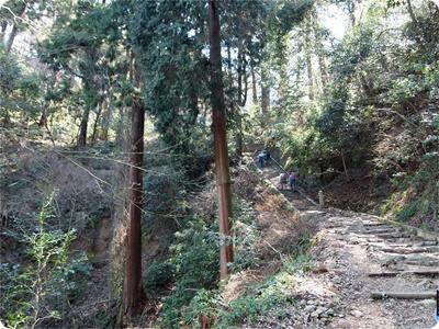 槇尾山ハイクP3239168
