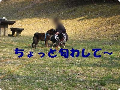 槇尾山ハイクP3239248