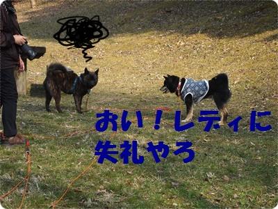 槇尾山ハイクP3239249