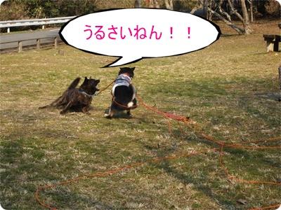 槇尾山ハイクP3239250