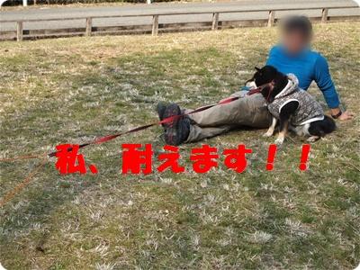 槇尾山ハイクP3239251