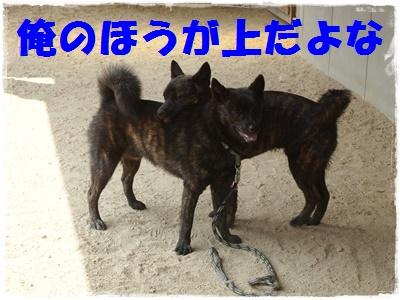 京都オフ会P6159609