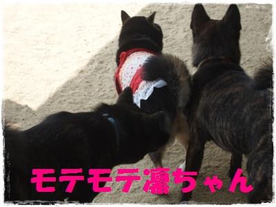 京都オフ会P6159617