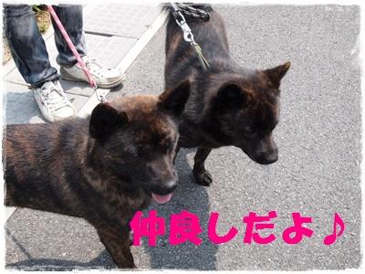 京都オフ会P6159662