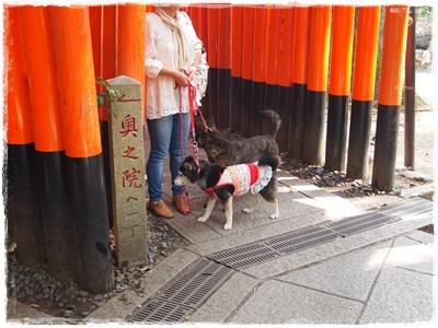 京都オフ会P6159673
