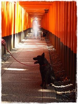 京都オフ会P6159675
