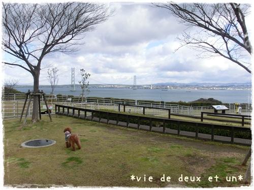 20140321blog8.jpg
