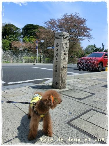 20140419blog12.jpg