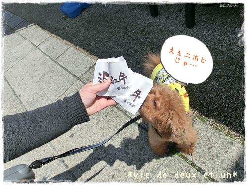 20140419blog13.jpg