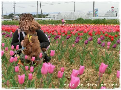 20140419blog24.jpg