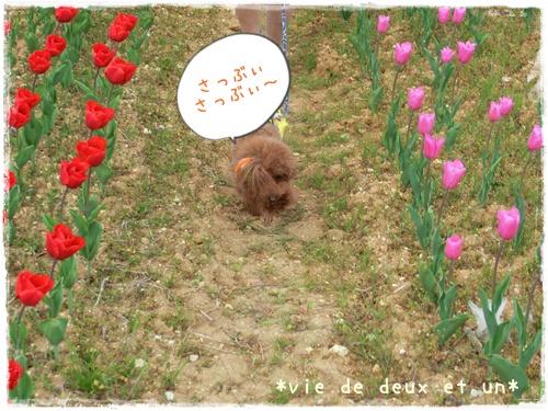 20140419blog26.jpg