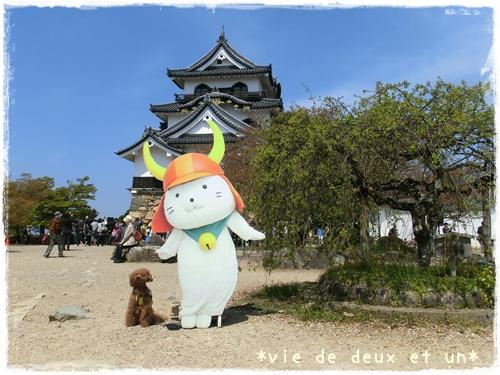 20140419blog9.jpg