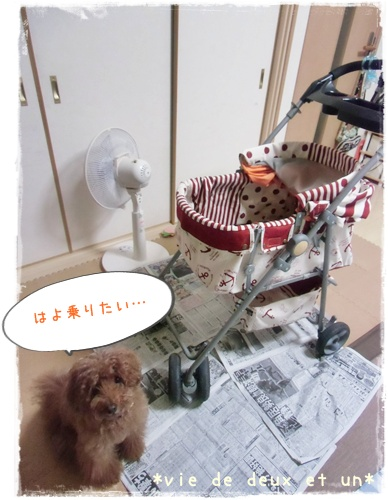 20140819blog13.jpg
