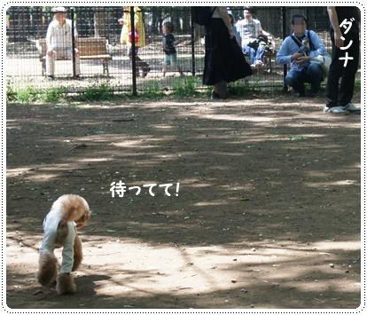201400609_4.jpg
