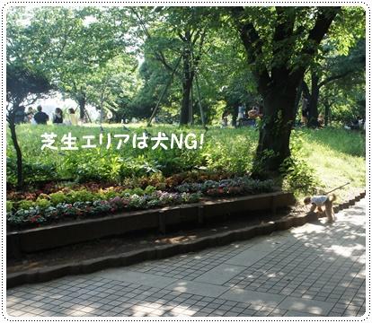 20140604_7.jpg