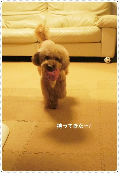 20140707_05.jpg