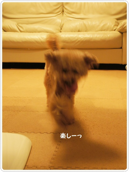 20140707_07.jpg