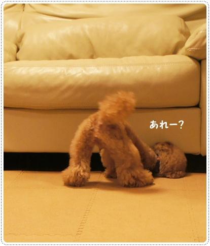 20140707_09.jpg