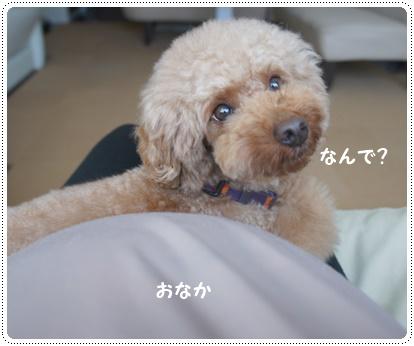 20140711_03.jpg