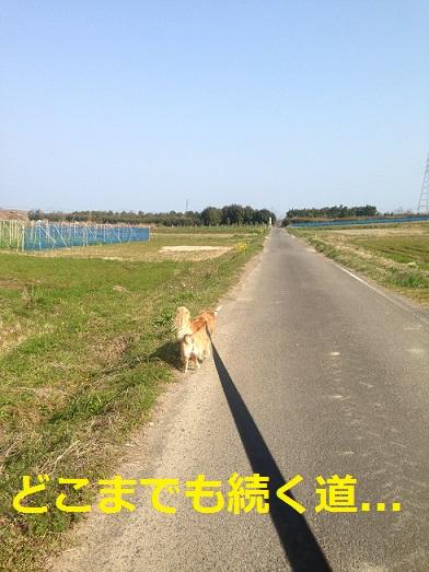 九州日記1