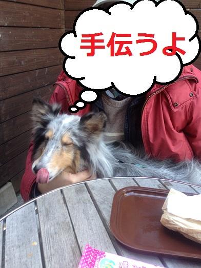 モン・ペシェミニョン3