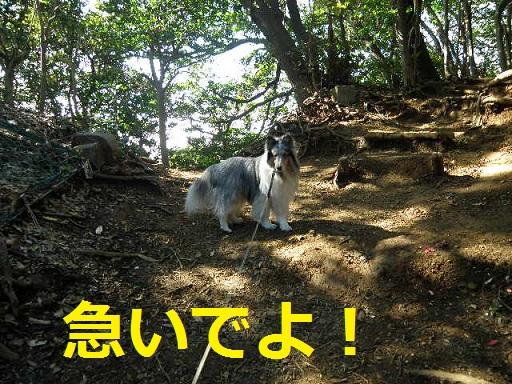 源氏山公園0