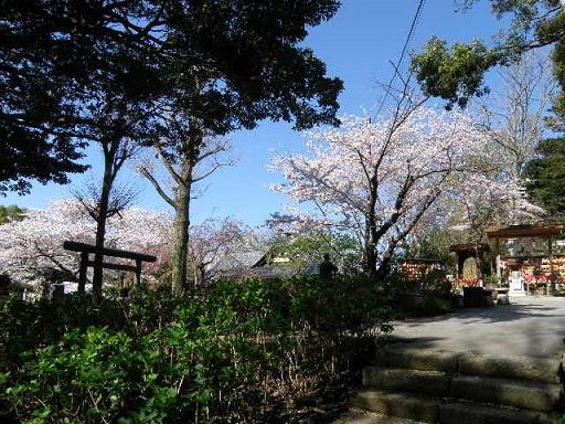 源氏山公園 葛原岡神社