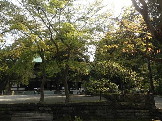 円覚寺景色