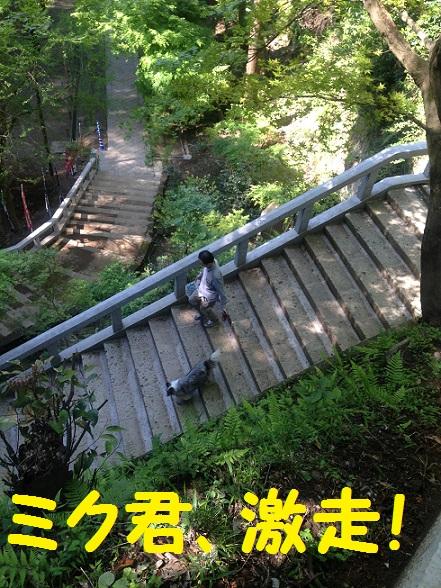 ハイキングコース3