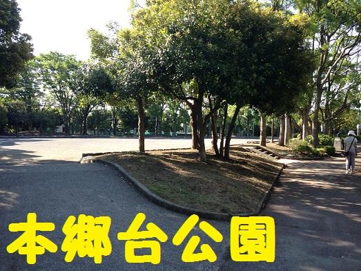本郷台公園