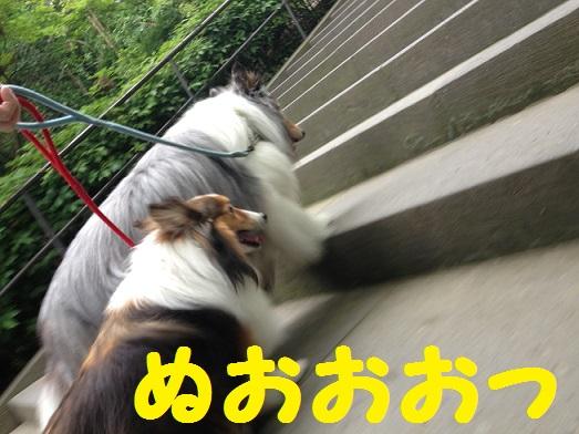 円覚寺112