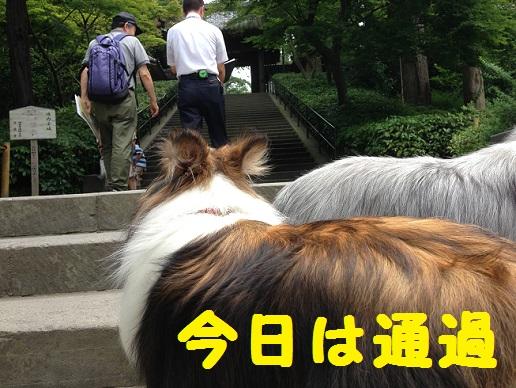 円覚寺通過