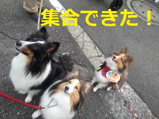神奈川県庁10
