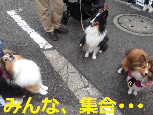 神奈川県庁9
