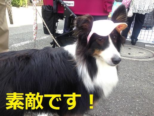 神奈川県庁8