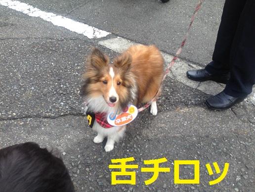 神奈川県庁7
