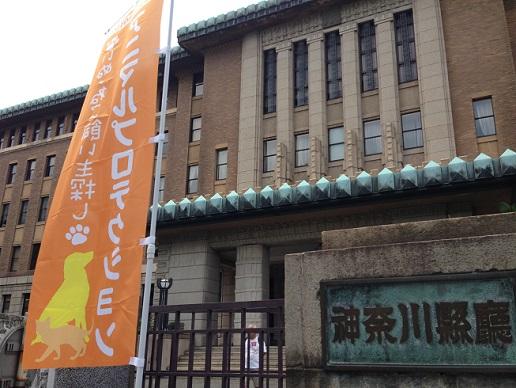 神奈川県庁2