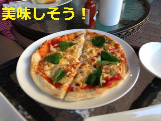 本物のピザ