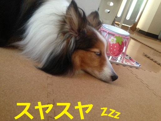 レオン眠る
