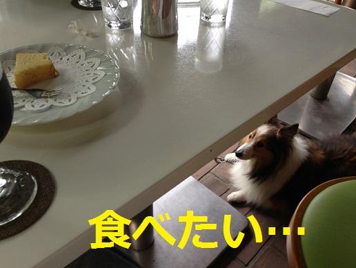 喫茶吉野3