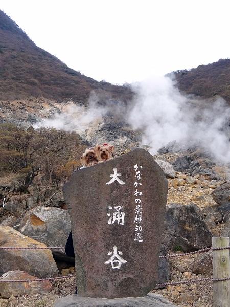 09大涌谷 (4)