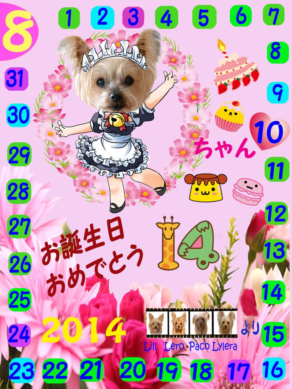 08102014 colonちゃん誕生日